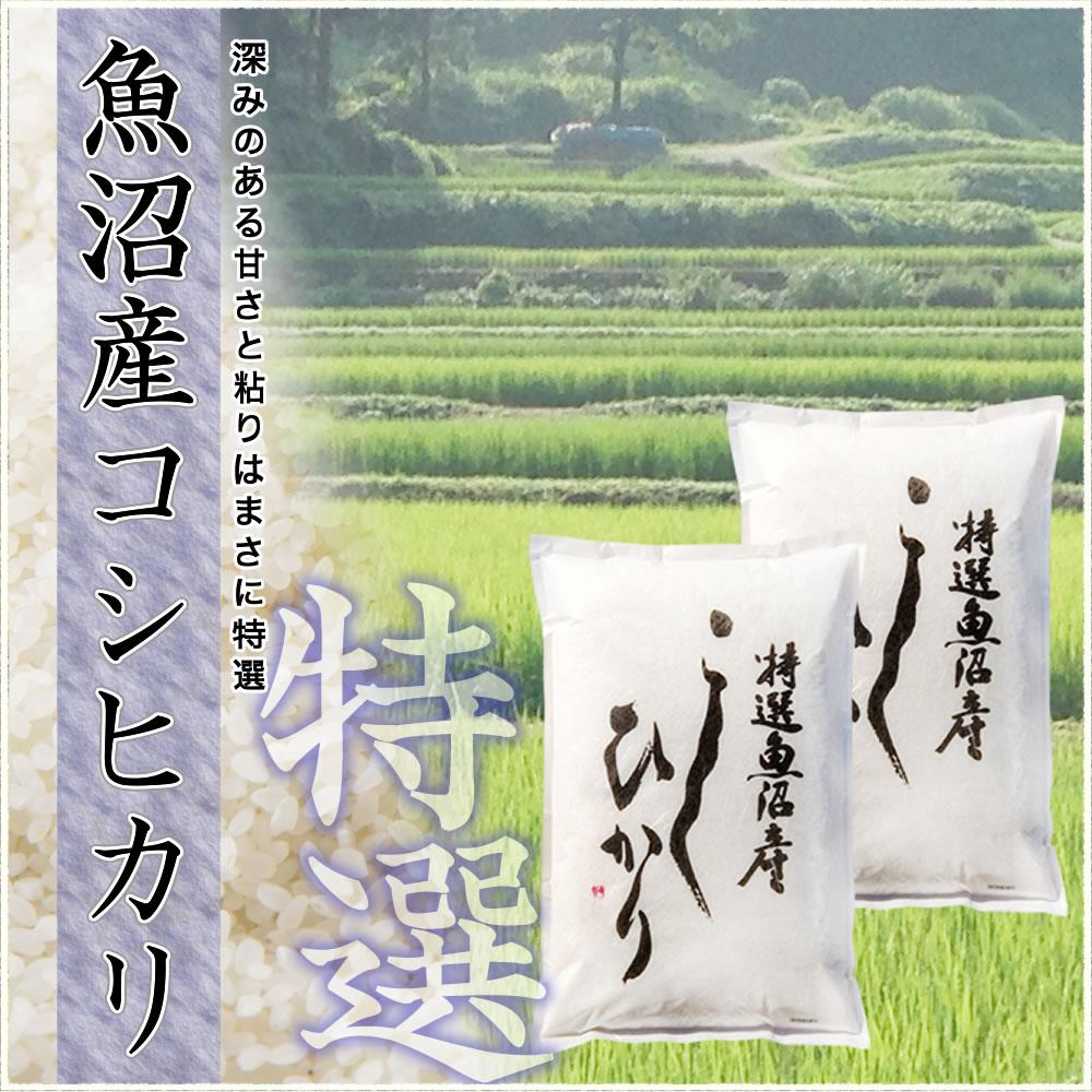 深みのある甘さと粘りはまさに日本一 魚沼産コシヒカリ