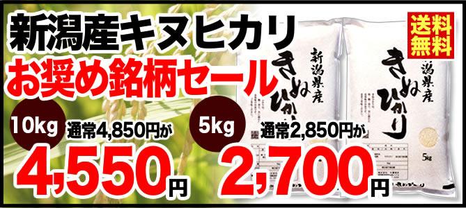 新潟産キヌヒカリ